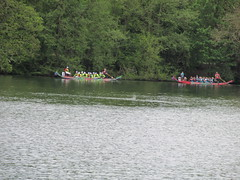 Dragon Boat Race 19-05-19 @ Roundhay Park, Leeds, England, UK (Shaz Vincent Photography) Tags: dragonboatrace boatrace roundhaypark leeds england uk event events martinhouse charity charityevents charityevent