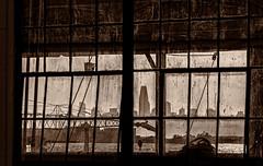 Through a Dirty Window Darkly (channel locks) Tags: california window olympusomdem1mkll nas alameda 2019nas1 mzuiko75mmf18 monotone hdr san francisco