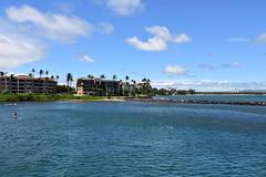 702 (bigeagl29) Tags: maalaea maui hawaii island oceanfront beach scenic scenery