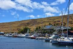 700 (bigeagl29) Tags: maalaea maui hawaii island oceanfront beach scenic scenery