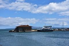 697 (bigeagl29) Tags: maalaea maui hawaii island oceanfront beach scenic scenery