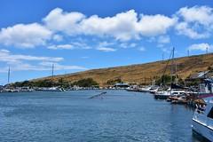 696 (bigeagl29) Tags: maalaea maui hawaii island oceanfront beach scenic scenery
