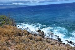 686 (bigeagl29) Tags: maalaea maui hawaii island oceanfront beach scenic scenery