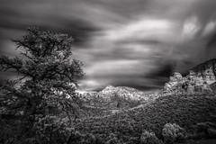 Sedona Infrared (MichellePhotos2) Tags: infrared ir bw blackwhite tree clouds sedona arizona redrock red rock sandstone nikon d850 nikond850 prime 20mm