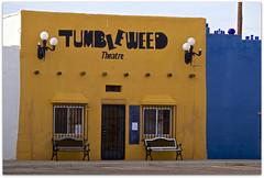 Tumbleweed (2bmolar) Tags: hbm hmmm benchmonday bench tumbleweedstew