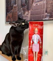 Smell of love (yimi 07) Tags: poppyparkerbigeye poppyparker blackcat cat