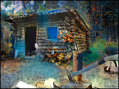 Alaska Cabin (-Brian Blair-) Tags: ddg house cabin axe trees wood stump