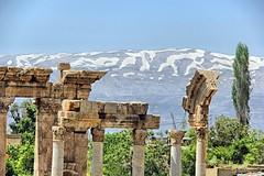 IMG_2503_qhdr (XimoPons : vistas 5.000.000 views) Tags: ximopons libano baalbek ruinas romanas ph 472