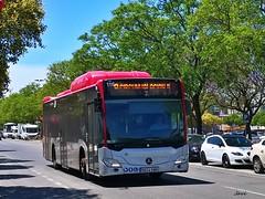 Mercedes  Benz Citaro GNC 116 de COMUJESA (Bus Box) Tags: autobus bus jerezdelafrontera urbano movilidad transporte