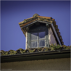 Dormer window. A fern grows in the gutter (Luc V. de Zeeuw) Tags: decay dormer dormerwindow fern growing gutter old roof window tineo asturias spain