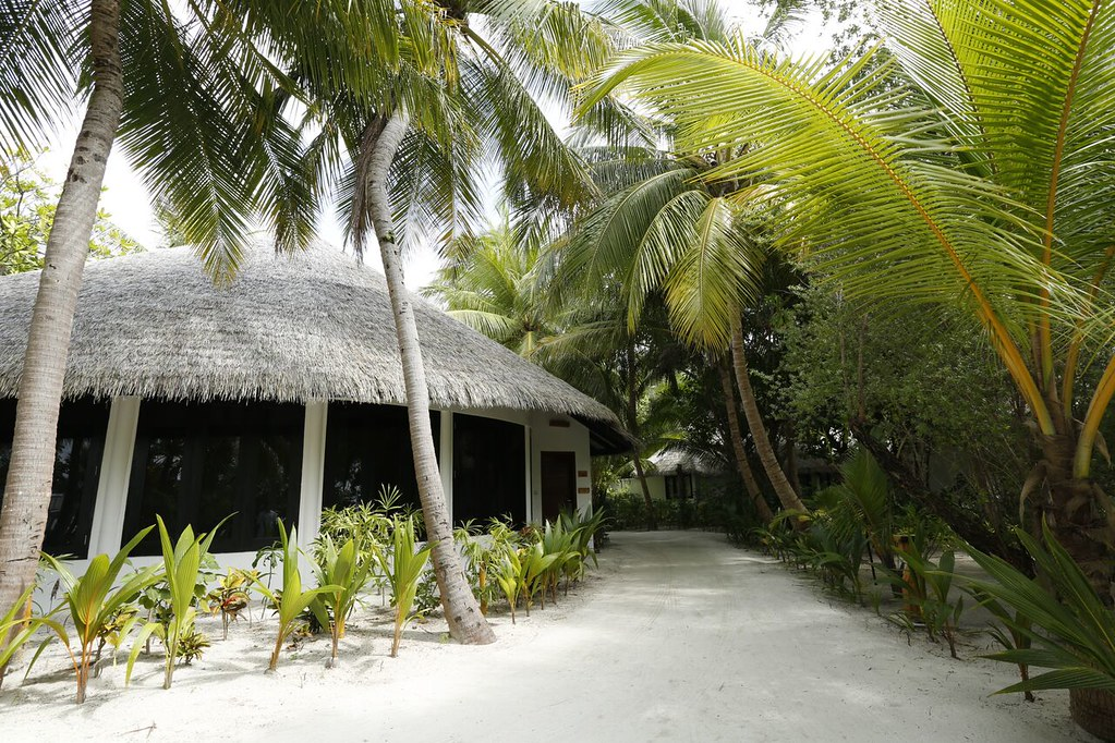 Maldivian Suite with Pool - Exterior