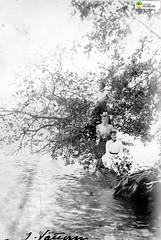 tm_11412 (Tidaholms Museum) Tags: svartvit positiv kvinna kvinnor woman women lady dam träd tree pos