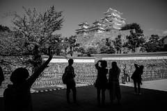 Himeji - Himeji-jo (-dow-) Tags: castello castle giappone himeji japan 姫路 日本 himejijo silhouettes monochrome fujifilm x70