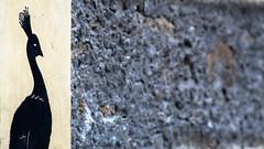Âme. [Soul] (Adrien GOGOIS) Tags: wall art artist bokeh perspective telephoto close focus shadow dark black color colorful street city urban life scene scape line regard look bird old vintage classic legacy manual prime adapted lens glass bbar adaptall mc