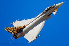 eurofighter typhoon 14 31 (laurrup) Tags: eurofighter typhoon 14 31 eurofightertyphoon1431 eurofightertyphoon 1431 eurofighter1431 tigre getafe madrid españa spain europa europe base aerea militar baseaereagetafe baseaerea baseaereamilitar desfile