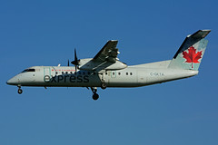 C-GKTA (Air Canada express - JAZZ) (Steelhead 2010) Tags: aircanada aircanadaexpress jazz dehavillandcanada dhc8 dhc8300 yyz creg cgkta