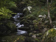 La Pequeña Cascada. (The Small Waterfall) (Capuchinox) Tags: alemania germany rio river cascada waterfall naturaleza nature agua water olympus