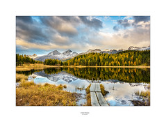 Lej da Staz (Schilt Thomas) Tags: alpen alpsee autu autumn bäume clouds engadin fotokursstmoritz herbst leidastaz ler lärchen schnee see sonnenaufgang sunrise tree weier wolken
