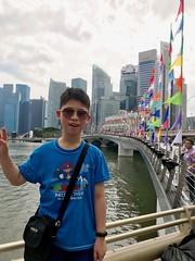 Singapore Skyline (camike) Tags: bridges buildings flags portrait rivers 晞 singapore
