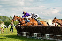 Race 7 BONUS - Catwalk Frank-2 (JTW Equine Images) Tags: p2p point pointtopoint knutsford cheshire tabley nh racing horse equine jockey trainer jumps