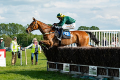 Race 7 - Teeton Surprise-8 (JTW Equine Images) Tags: p2p point pointtopoint knutsford cheshire tabley nh racing horse equine jockey trainer jumps