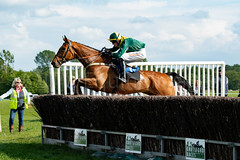 Race 7 - Teeton Surprise-7 (JTW Equine Images) Tags: p2p point pointtopoint knutsford cheshire tabley nh racing horse equine jockey trainer jumps