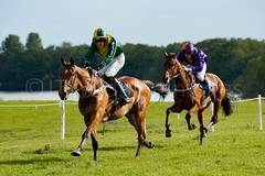 Race 7 - Teeton Surprise-6 (JTW Equine Images) Tags: p2p point pointtopoint knutsford cheshire tabley nh racing horse equine jockey trainer jumps