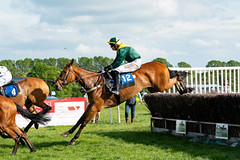 Race 7 - Teeton Surprise-4 (JTW Equine Images) Tags: p2p point pointtopoint knutsford cheshire tabley nh racing horse equine jockey trainer jumps