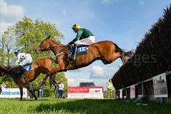 Race 7 - Teeton Surprise-2 (JTW Equine Images) Tags: p2p point pointtopoint knutsford cheshire tabley nh racing horse equine jockey trainer jumps