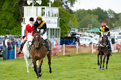 Race 6 - Rules Of War-2 (JTW Equine Images) Tags: p2p point pointtopoint knutsford cheshire tabley nh racing horse equine jockey trainer jumps
