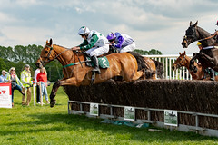 Race 5 - Duke Arcadio-11 (JTW Equine Images) Tags: p2p point pointtopoint knutsford cheshire tabley nh racing horse equine jockey trainer jumps