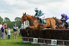 Race 5 - Duke Arcadio-7 (JTW Equine Images) Tags: p2p point pointtopoint knutsford cheshire tabley nh racing horse equine jockey trainer jumps