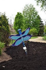 JIM_2845 (James J. Novotny) Tags: dragonflies sculptures sculpture d750 nikon rotarygarden rotarybotanicalgardens gardens garden gardenbotanical unlimitedphotos unlimiedphotos unlimited art artwork