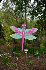 JIM_2838 (James J. Novotny) Tags: dragonflies sculptures sculpture d750 nikon rotarygarden rotarybotanicalgardens gardens garden gardenbotanical unlimitedphotos unlimiedphotos unlimited art artwork