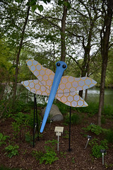 JIM_2833 (James J. Novotny) Tags: dragonflies sculptures sculpture d750 nikon rotarygarden rotarybotanicalgardens gardens garden gardenbotanical unlimitedphotos unlimiedphotos unlimited art artwork