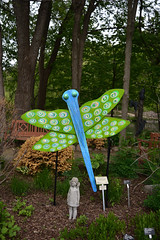 JIM_2826 (James J. Novotny) Tags: dragonflies sculptures sculpture d750 nikon rotarygarden rotarybotanicalgardens gardens garden gardenbotanical unlimitedphotos unlimiedphotos unlimited art artwork