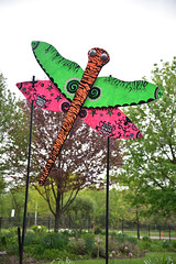JIM_2779 (James J. Novotny) Tags: dragonflies sculptures sculpture d750 nikon rotarygarden rotarybotanicalgardens gardens garden gardenbotanical unlimitedphotos unlimiedphotos unlimited art artwork