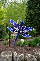 JIM_2681 (James J. Novotny) Tags: dragonflies sculptures sculpture d750 nikon rotarygarden rotarybotanicalgardens gardens garden gardenbotanical unlimitedphotos unlimiedphotos unlimited art artwork