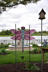 JIM_2649 (James J. Novotny) Tags: dragonflies sculptures sculpture d750 nikon rotarygarden rotarybotanicalgardens gardens garden gardenbotanical unlimitedphotos unlimiedphotos unlimited art artwork