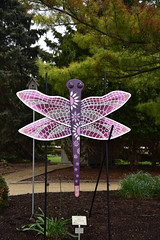 JIM_2641 (James J. Novotny) Tags: dragonflies sculptures sculpture d750 nikon rotarygarden rotarybotanicalgardens gardens garden gardenbotanical unlimitedphotos unlimiedphotos unlimited art artwork