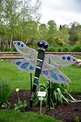 JIM_2639 (James J. Novotny) Tags: dragonflies sculptures sculpture d750 nikon rotarygarden rotarybotanicalgardens gardens garden gardenbotanical unlimitedphotos unlimiedphotos unlimited art artwork