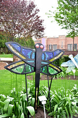 JIM_2637 (James J. Novotny) Tags: dragonflies sculptures sculpture d750 nikon rotarygarden rotarybotanicalgardens gardens garden gardenbotanical unlimitedphotos unlimiedphotos unlimited art artwork