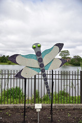 JIM_2613 (James J. Novotny) Tags: dragonflies sculptures sculpture d750 nikon rotarygarden rotarybotanicalgardens gardens garden gardenbotanical unlimitedphotos unlimiedphotos unlimited art artwork