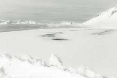 Kann man hier Schlittschuh laufen? --- Can you ice-skate here? (der Sekretär) Tags: alpen alps berg eis frost graubünden grisons himmel kantongraubünden schnee schweiz see switzerland wasser weite wolke wolken cantonofgrisons cloud clouds eisig frostig frosty frozen ice icy lasuisse lake monochrom mountain sky snow space vereist water weiss white zugefroren