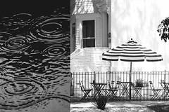 MMM Use Of Lines (Carrie McGann) Tags: hmmm mosaicmontagemonday mosaic montage useoflines rain umbrella nikon nikond850 interesting