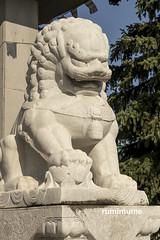 Temple -LionDog (rumimume) Tags: rumimume 2019 niagara ontario canada photo canon 80d summer sun outdoor day light temple statue stone carving