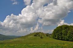 """Der Orchideenhügel (Uli He - Fotofee) Tags: ulrike """"ulrike he"""" uli """"uli hergert"""" hergert nikon """"nikon d90"""" fotofee fotografie hobbie wanderung rhön """"hessische rhön"""" wasserkuppe pferdskopf eube guckaisee himmlisch wandern wolken himmelblau orchideen """"wilde orchideen"""" berge vulkan vulkane"""