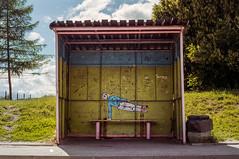 B u s s t o p # 1 (Zew1920) Tags: busstop danzig gdansk analog canon ae1 50mm color analogsoul mural brutgroup modra przystanek projektprzystanek agfa vista jp arbuzek czajnik streetart