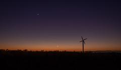 Venus leads the way (lizcaldwell72) Tags: hawkesbay sunrise venus vines sky windmill moon mercury newzealand light