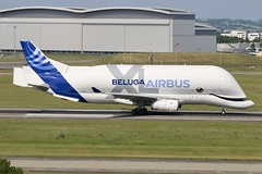 F-WBXL Airbus A330-743L Beluga XL Airbus Toulouse 16.5.19 (Colin Cooke Photo) Tags: airbus a330743l beluga xl